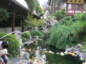 Foto rusciello con piante e fiori
