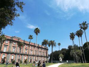 Foto del Museo e Real Bosco di Capodimonte