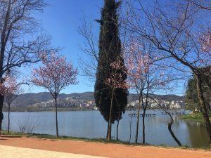 Foto del lago artificiale e del parco